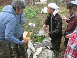家庭菜園講座1